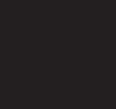 Black (BK) Simliar to RAL 9005